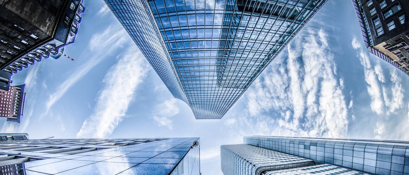 Top 4 habilidades indispensables para el trabajo del futuro